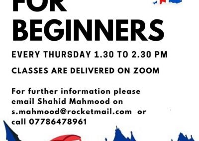 Online beginners class